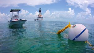 Explore Biscayne Bay by Boat