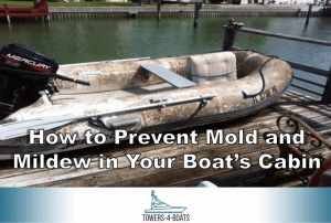 How to Prevent Mold and Mildew in Your Boat's Cabin